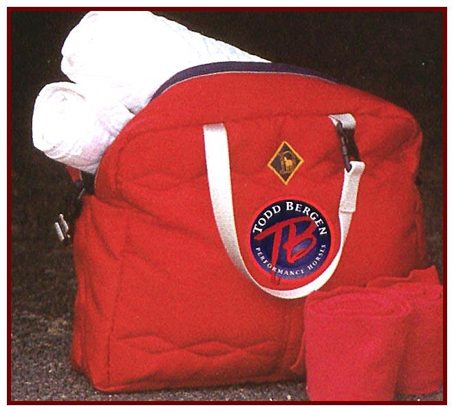 Small Arena Purse Bag