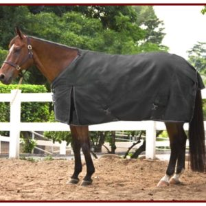 Kensington Lightweight Turnout Rug