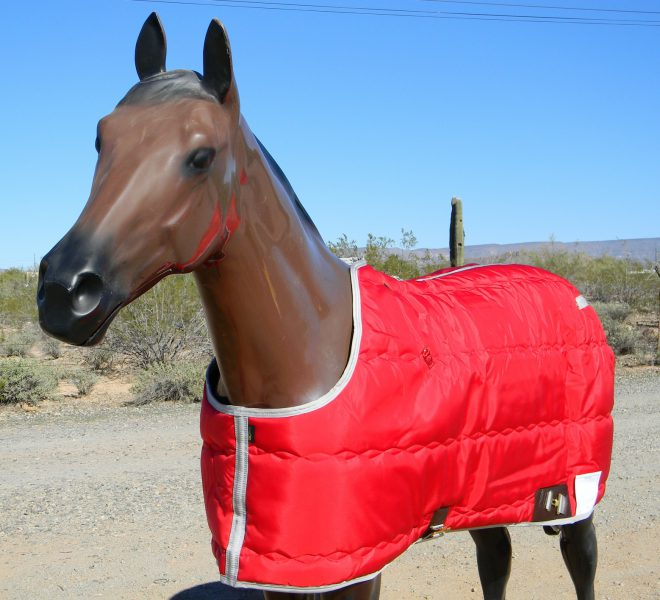 Big D Kodiak Blanket Red w/silver trim closed front