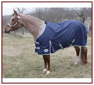 Horse Sense 1200D Mid-Weight Turnout Blanket 240G