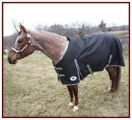 Horse Sense Light Turnout Blanket 420D