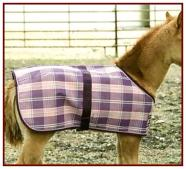 Kensington Foal Protective Sheet