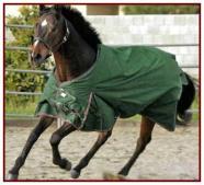 Kensington Ultra-Lightweight Rainsheet with Fleece
