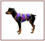 Dog Dazzle Tees