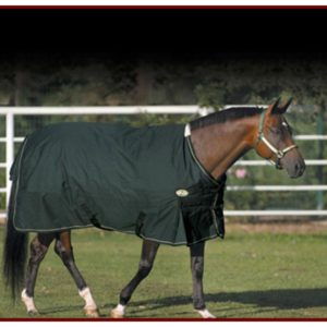 450 Denier Sussex Horse Blanket
