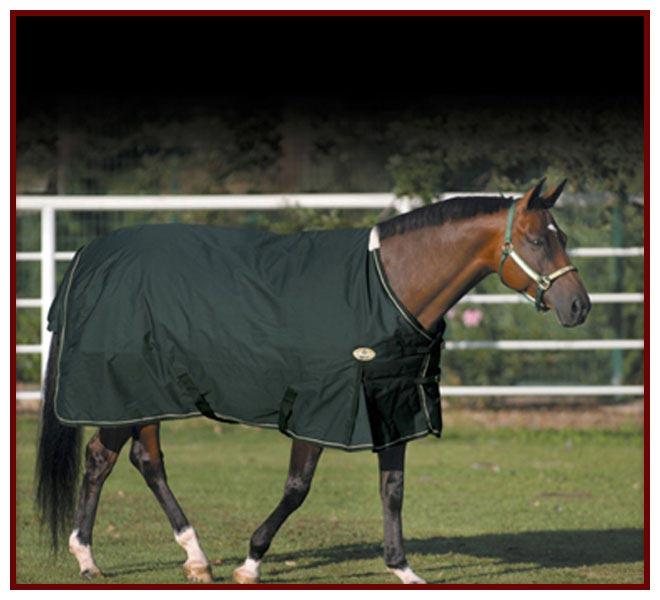 450 Denier Sussex Horse Blanket