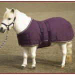 Kensington Mini Turnout Blanket