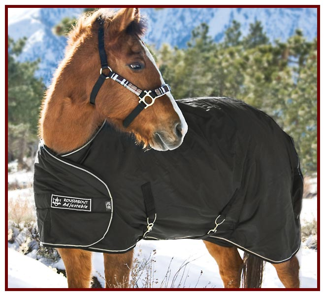 Yearling Adjustable All Around HD 1200D Euro Cut 180g Medium Weight Turnout
