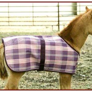 Kensington Foal Protective Sheet
